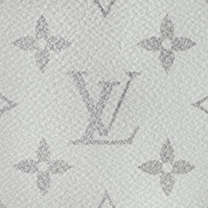 Louis Vuitton Monogram Antarctica