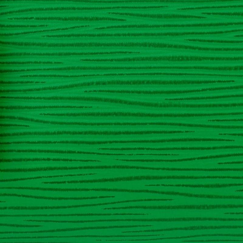 LV Epi LV Motion Green